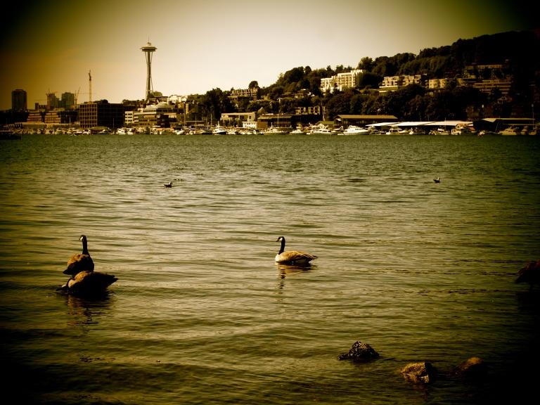 lake union